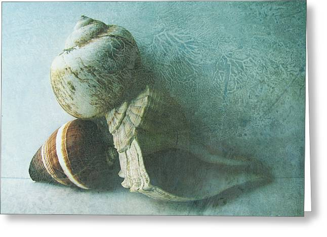 Sea Shell Mixed Media Greeting Cards - Sea Shells III teal blue Greeting Card by Ann Powell
