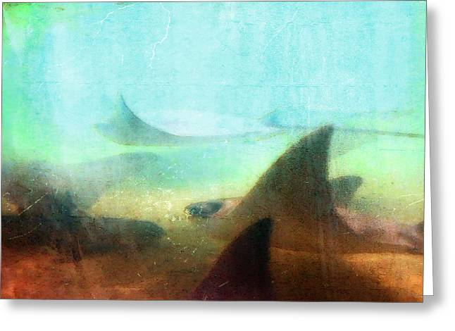 Recently Sold -  - Snorkel Greeting Cards - Sea Spirits - Manta Ray Art by Sharon Cummings Greeting Card by Sharon Cummings
