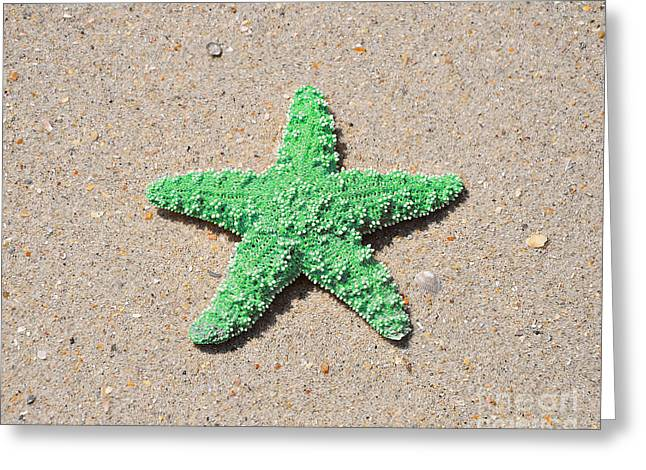 Star Fish Greeting Cards - Sea Star - Green Greeting Card by Al Powell Photography USA