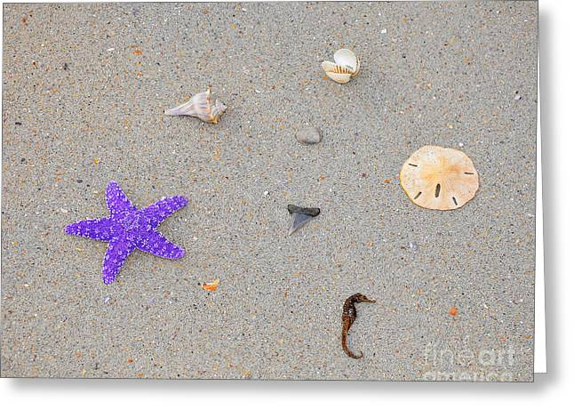 Recently Sold -  - Sea Horse Greeting Cards - Sea Swag - Purple Greeting Card by Al Powell Photography USA