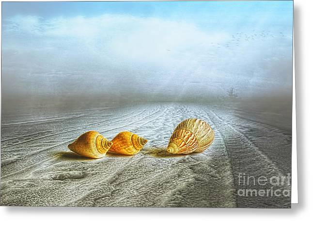 Multicolored Digital Greeting Cards - Sea Treasures Greeting Card by Veikko Suikkanen
