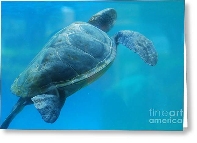 Turtle Sculptures Greeting Cards - Sea Turtle Under Water Greeting Card by DejaVu Designs