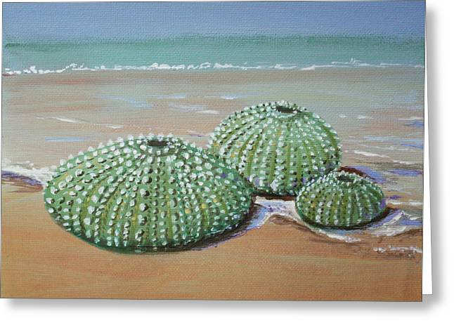 Sea Urchins Greeting Card by Yvonne Ayoub