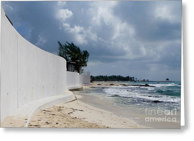 Sea Wall Greeting Card by Terry Weaver