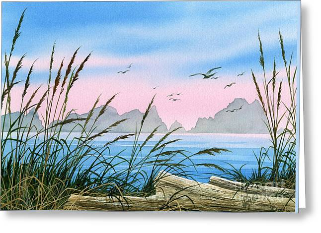 Landscape Framed Prints Greeting Cards - Seacoast Beauty Greeting Card by James Williamson