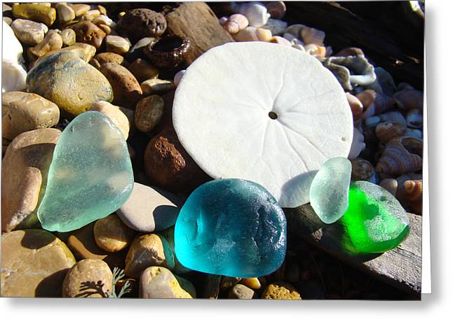 Seaglass Greeting Cards - Seaglass art prints Rock Garden Sand Dollar Greeting Card by Baslee Troutman