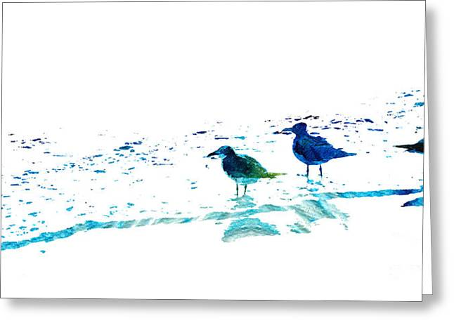 Turquoise Pastel Greeting Cards - Seagull Art - On The Shore - By Sharon Cummings Greeting Card by Sharon Cummings