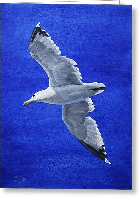 White Birds Greeting Cards - Seagull in Flight Greeting Card by Crista Forest