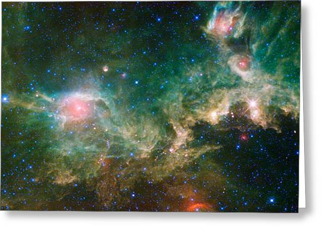 Glister Greeting Cards - Seagull Nebula Greeting Card by Celestial Images