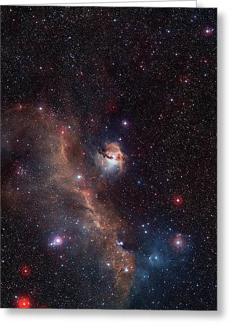 Seagull Nebula Greeting Card by Digitized Sky Survey 2/european Southern Observatory