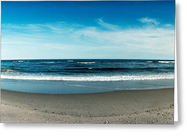 Surf City Greeting Cards - Seagull Standing On A Wooden Post Greeting Card by Panoramic Images