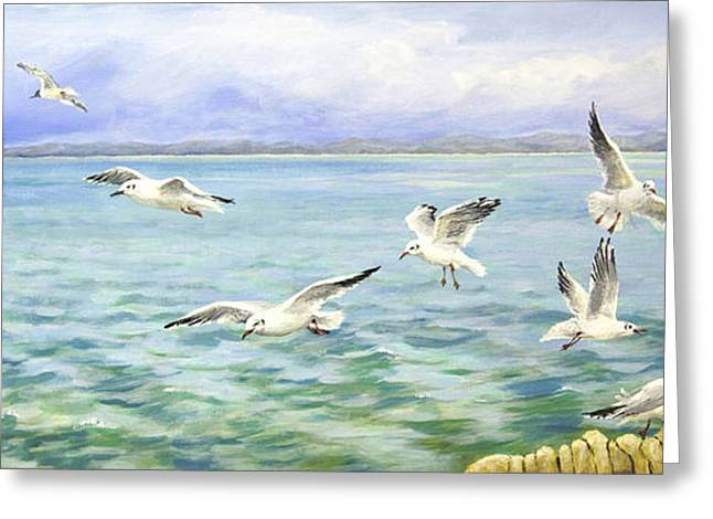 Flying Seagull Greeting Cards - Seagulls Flight Greeting Card by Sandra  Francis