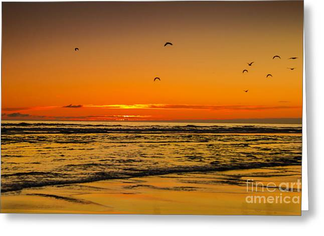 Wave Sublime Greeting Cards - Seagulls Flying Sunset Greeting Card by Robert Bales