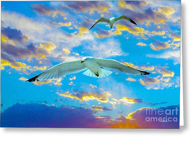 Flying Bird Mixed Media Greeting Cards - Seagulls  Greeting Card by Jon Neidert