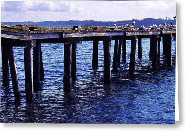 Whidbey Island Greeting Cards - Seagulls On A Pier, Whidbey Island Greeting Card by Panoramic Images