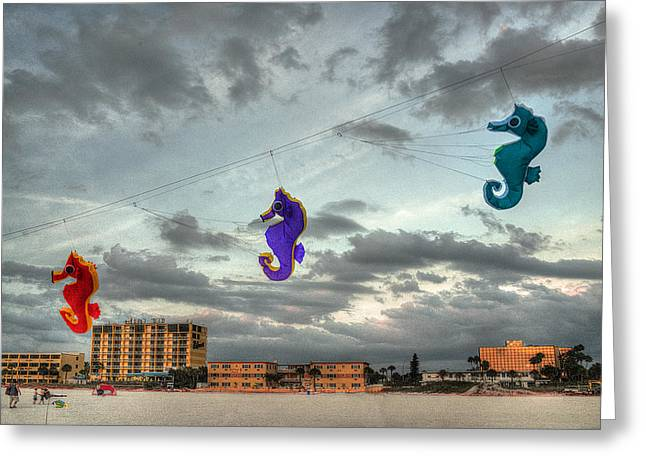 Two Seahorses Greeting Cards - Seahorse Dance Greeting Card by William Fields