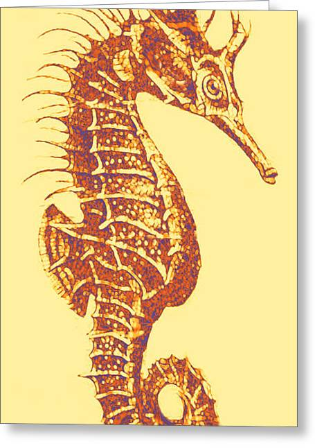 Seahorse Digital Greeting Cards - Seahorse- Left Facing Greeting Card by Jane Schnetlage