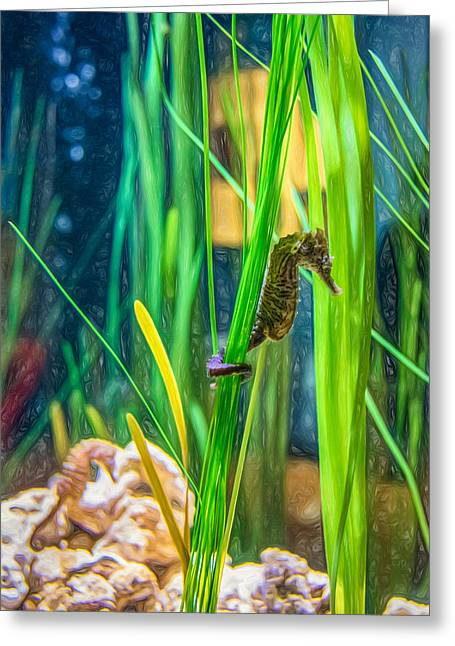 Sea Creature Photos Greeting Cards - Seahorse - Paint Greeting Card by Steve Harrington