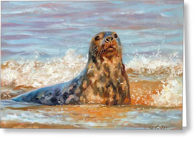 Ocean Mammals Greeting Cards - Seal Greeting Card by David Stribbling