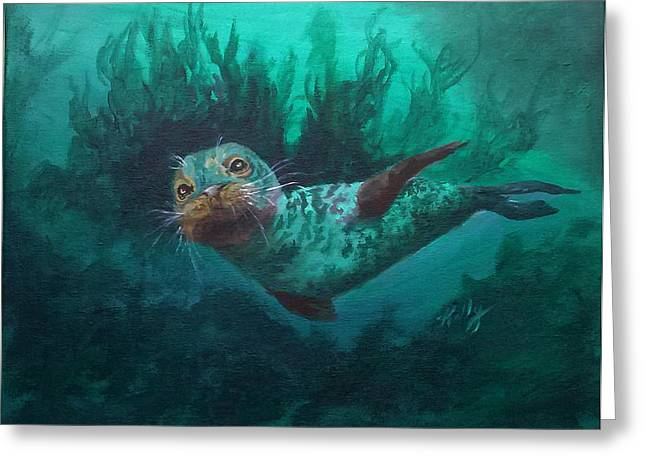 Aquatic Drawings Greeting Cards - Seal Greeting Card by Kathleen Kelly Thompson