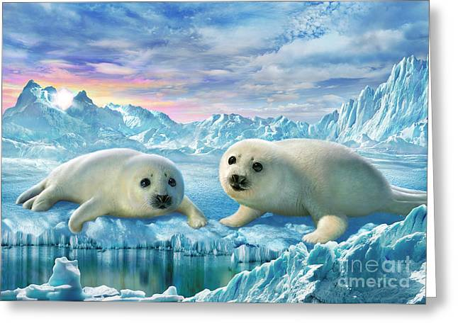 Tenderness Greeting Cards - Seal Pups Greeting Card by Adrian Chesterman