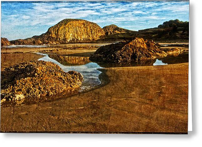 Beach Pictures Greeting Cards - Seal Rock Beach Early AM Greeting Card by Thom Zehrfeld