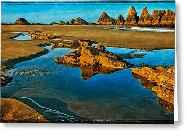 Beach Pictures Greeting Cards - Seal Rock Beach Greeting Card by Thom Zehrfeld
