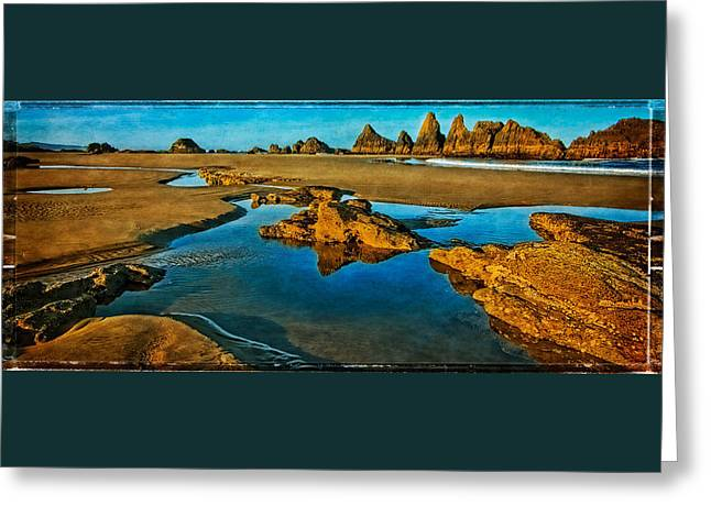 The Houses Greeting Cards - Seal Rock Beach Greeting Card by Thom Zehrfeld