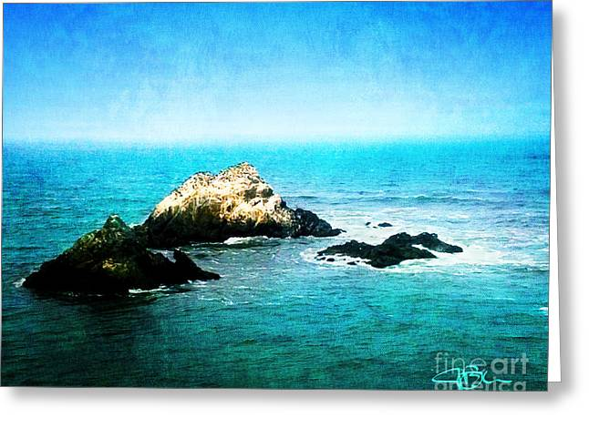 California Sea Lions Greeting Cards - Seal Rocks from Cliff House San Francisco California Greeting Card by Jani Bryson