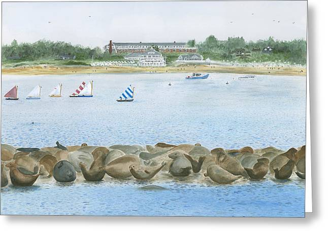 Chatham Paintings Greeting Cards - Seals at Chatham Bars Inn Greeting Card by Heather MacKenzie