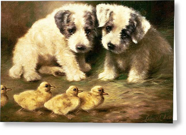 Ducklings Greeting Cards - Sealyham Puppies and Ducklings Greeting Card by Lilian Cheviot