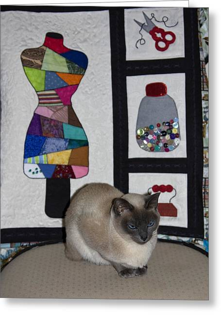Tonkinese Cat Greeting Cards - Seamstress Cat Greeting Card by Sally Weigand