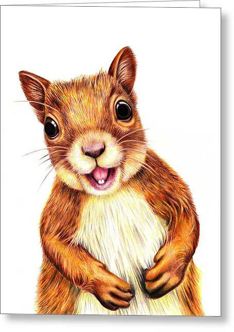 Squirrel Drawings Greeting Cards - Seamus says Hello Greeting Card by Margaret Sanderson