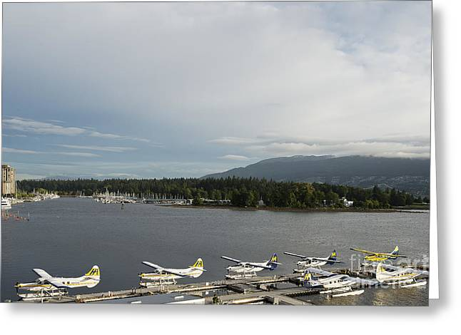 North Vancouver Greeting Cards - Seaplanes Greeting Card by Ivy Ho