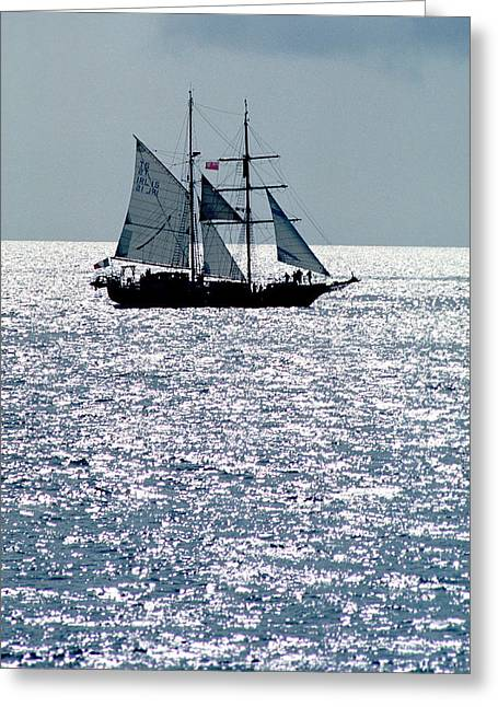 Docked Sailboat Greeting Cards - Seascape Greeting Card by Anonymous