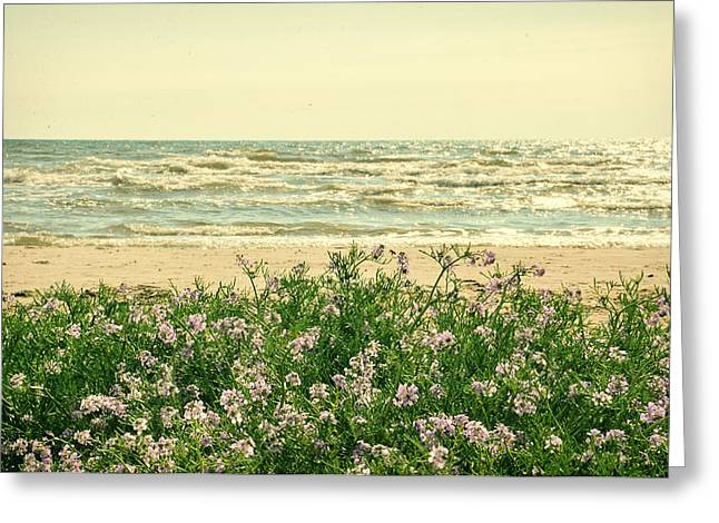 Seascape Greeting Card by Gynt