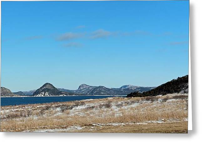 Seascape - Panorama Greeting Card by Barbara Griffin