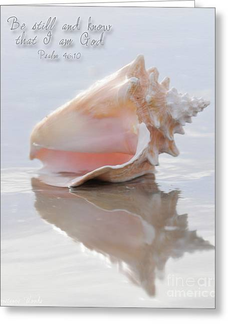 Seashell Art Greeting Cards - Seashell Be Still Greeting Card by Constance Woods