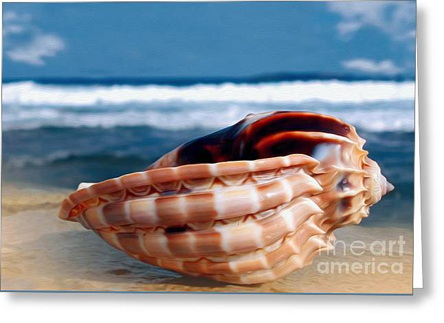 Cone Shells Greeting Cards - Seashell before Blue Ocean Greeting Card by Kaye Menner