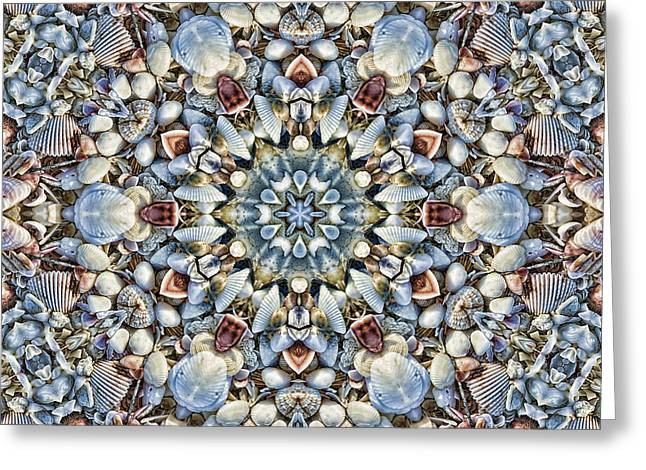 Shell Texture Greeting Cards - Seashell Kaleidoscope Greeting Card by Cindi Ressler