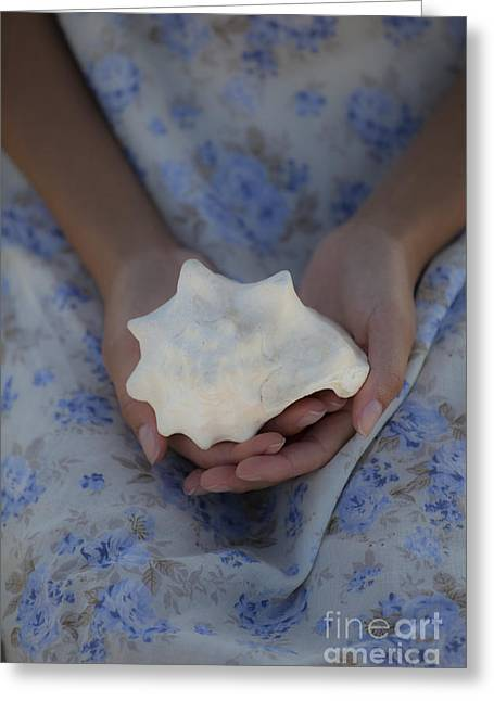 Women Only Greeting Cards - Seashell Greeting Card by Maria Heyens