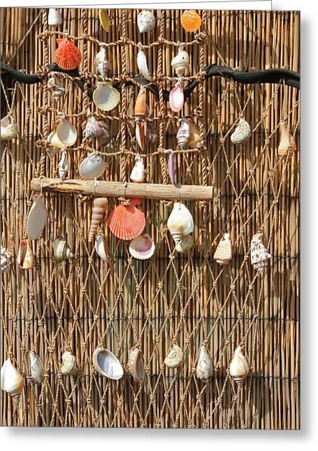 Hanging Mobile Greeting Cards - Seashell Mobile Hanging Greeting Card by John Orsbun