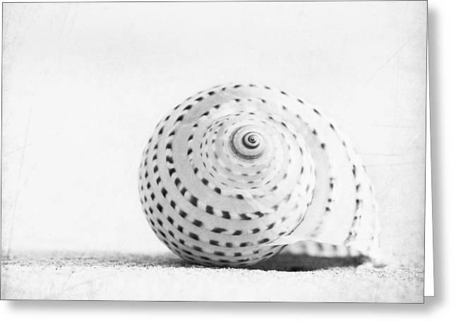 Seashell Voices Greeting Card by Carolyn Cochrane