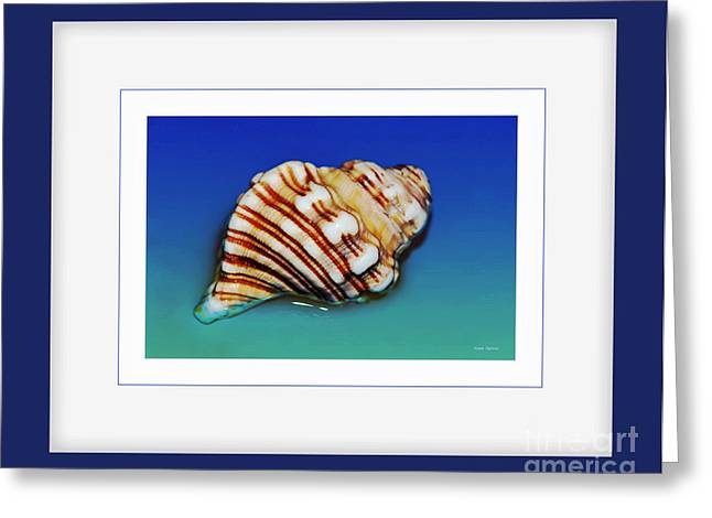 Sea Shell Art Greeting Cards - Seashell Wall Art 1 - Blue Frame Greeting Card by Kaye Menner