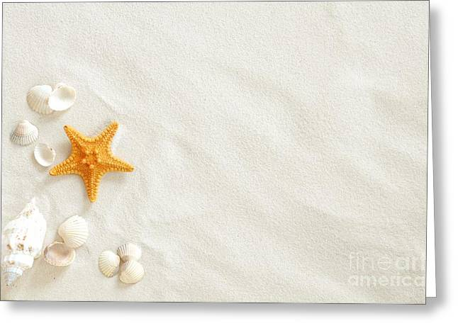 Seashell Picture Pyrography Greeting Cards - Seashells Greeting Card by Boon Mee