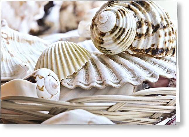 Seashells Greeting Card by Elena Elisseeva