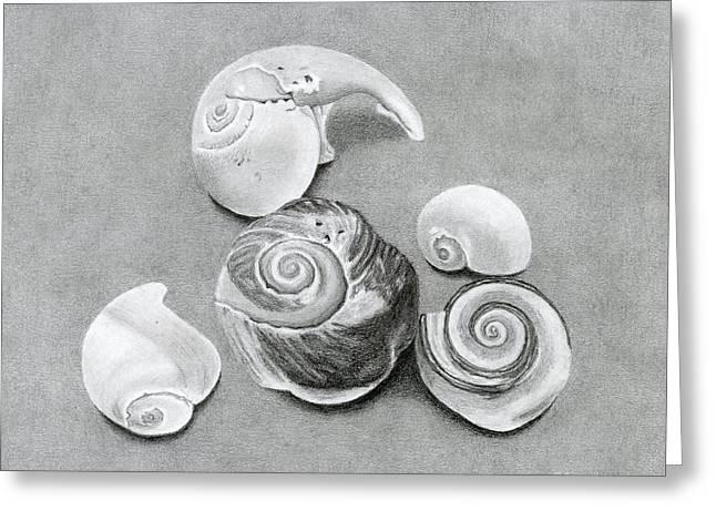 Seashells Greeting Card by Sarah Batalka