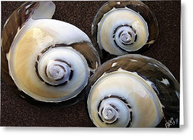 Sea Shell Digital Art Photographs Greeting Cards - Seashells Spectacular No 23 Greeting Card by Ben and Raisa Gertsberg
