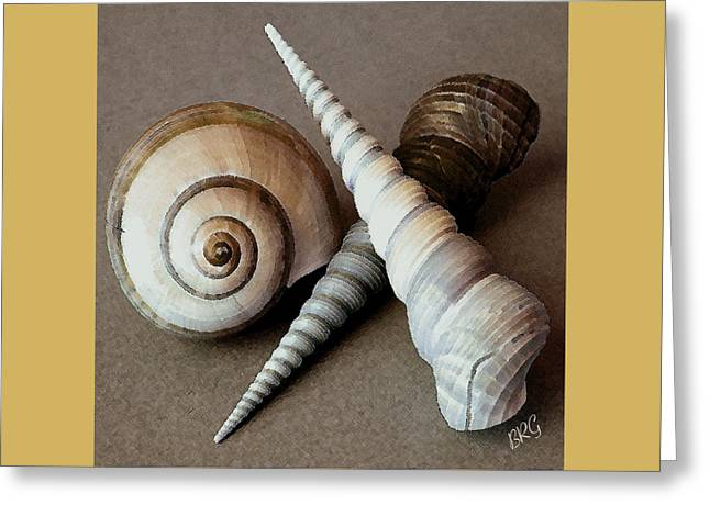 Yellow Brown Greeting Cards - Seashells Spectacular No 24 Greeting Card by Ben and Raisa Gertsberg