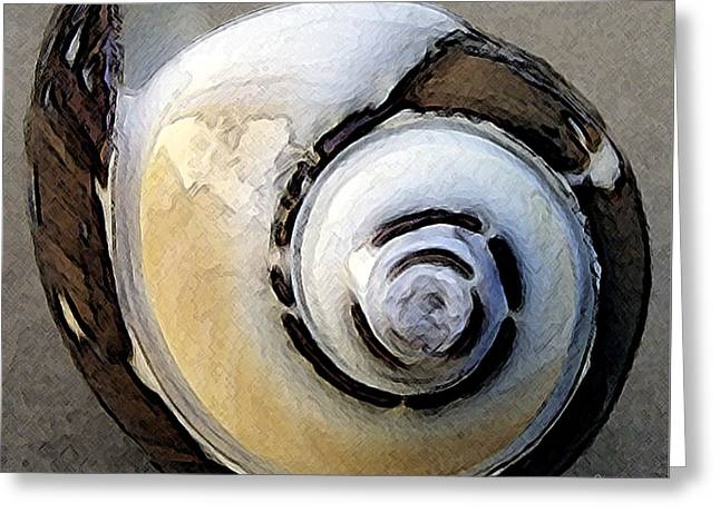Pattern Photographs Greeting Cards - Seashells Spectacular No 3 Greeting Card by Ben and Raisa Gertsberg